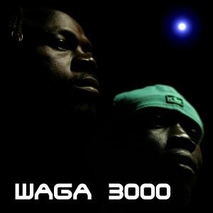 cover waga 3000